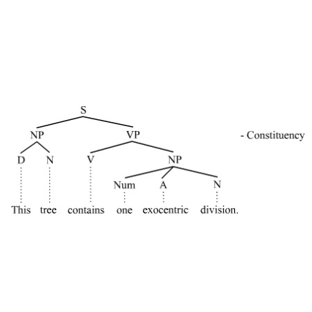 differentiating between lexical and inflectional morphology An allomorph is a morph that has a unique set of grammatical or lexical features all allomorphs with the same set of features forms a morpheme a morpheme, then, is a set of allomorphs that have the same set of features.